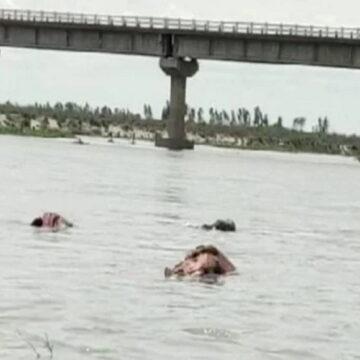 गंगा नदी में फिर तैरती मिलीं लाशें, जलस्तर बढ़ते ही ऊपर आए शव