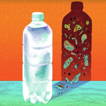 प्लास्टिक की बोतल में पानी पीने का मतलब है जहर पीना, नुकसान जान हो जाएंगे हैरान