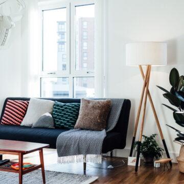 घर में हवा साफ करने से लेकर एलर्जी से बचाव तक का काम करता है रबर प्लांट